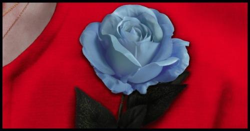 rosa-retouched-low